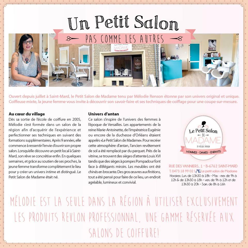 Le petit salon de madame saint mard jjmaes for Le petit salon villereal